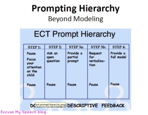 Learn about Prompting Hierarchy in this presentation document that you can share with your staff and/or parents!