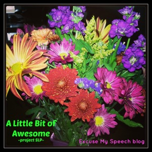 "Please join me and share ""A Little Bit of Awesome"" from your day at Excusemyspeech.com"