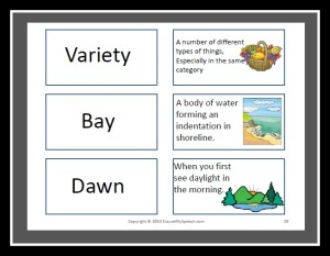 Vocabulary Flash Cards related to the Spookley story